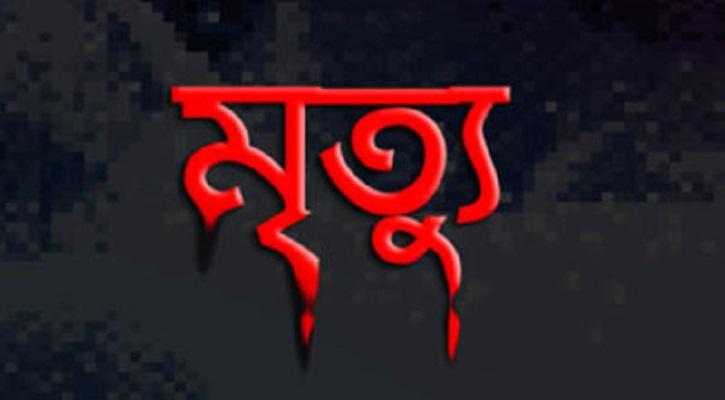 হাতির আক্রমণে সত্তরোর্ধ্ব বয়সী বৃদ্ধের মৃত্যু