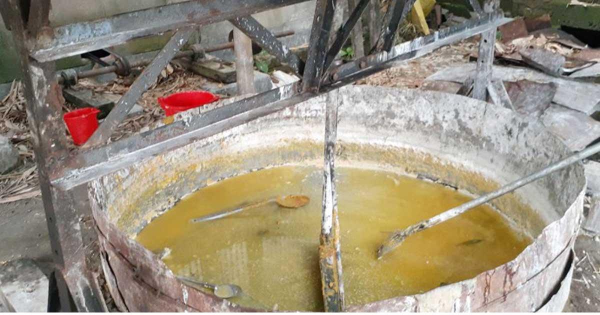নিম্নমানের ভোজ্য তেল বিক্রির দায়ে ২৬ প্রতিষ্ঠানের লাইসেন্স বাতিল