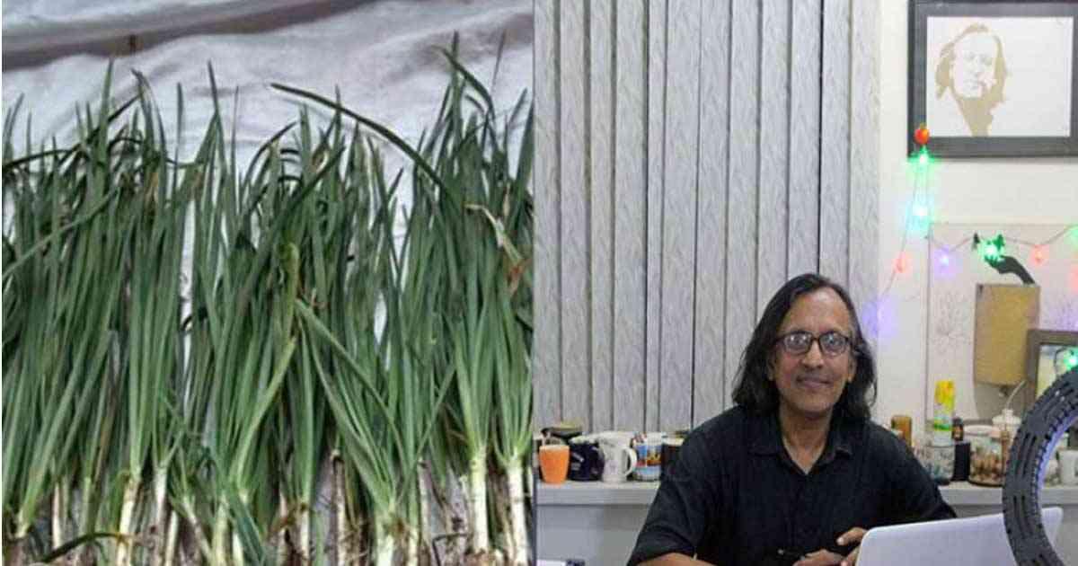 রসুনের বিকল্প 'বিডি নিরা'