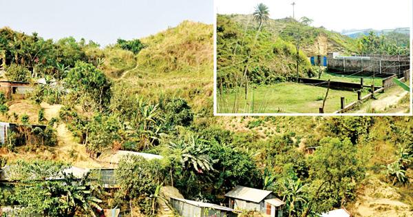 জঙ্গল সলিমপুর: এক মশিউরে তটস্থ লাখো বাসিন্দা